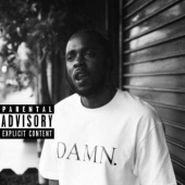 Damn - Collector's Edition