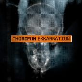 Excarnation