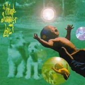 The Infinite Summer Of Love