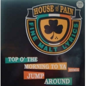 Top O The Morning To Ya (remix) / Jump Around